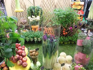 2010_0309salonagriparis0023